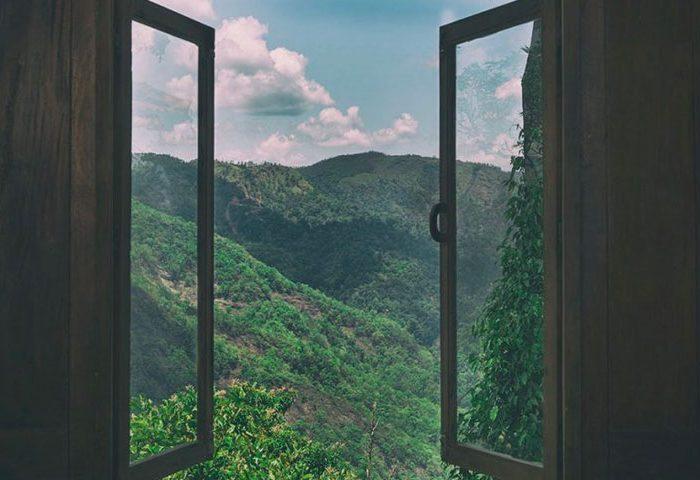 gallery_window